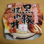 旨い!九州新幹線 出水駅の駅弁 黒豚焼肉丼