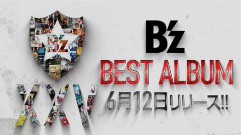 bz-bestalbum-xxv